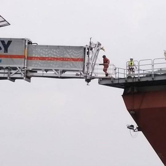 Image: Safeway Osprey